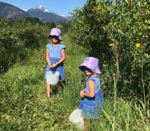 Kids At U-Pick Berry Farm